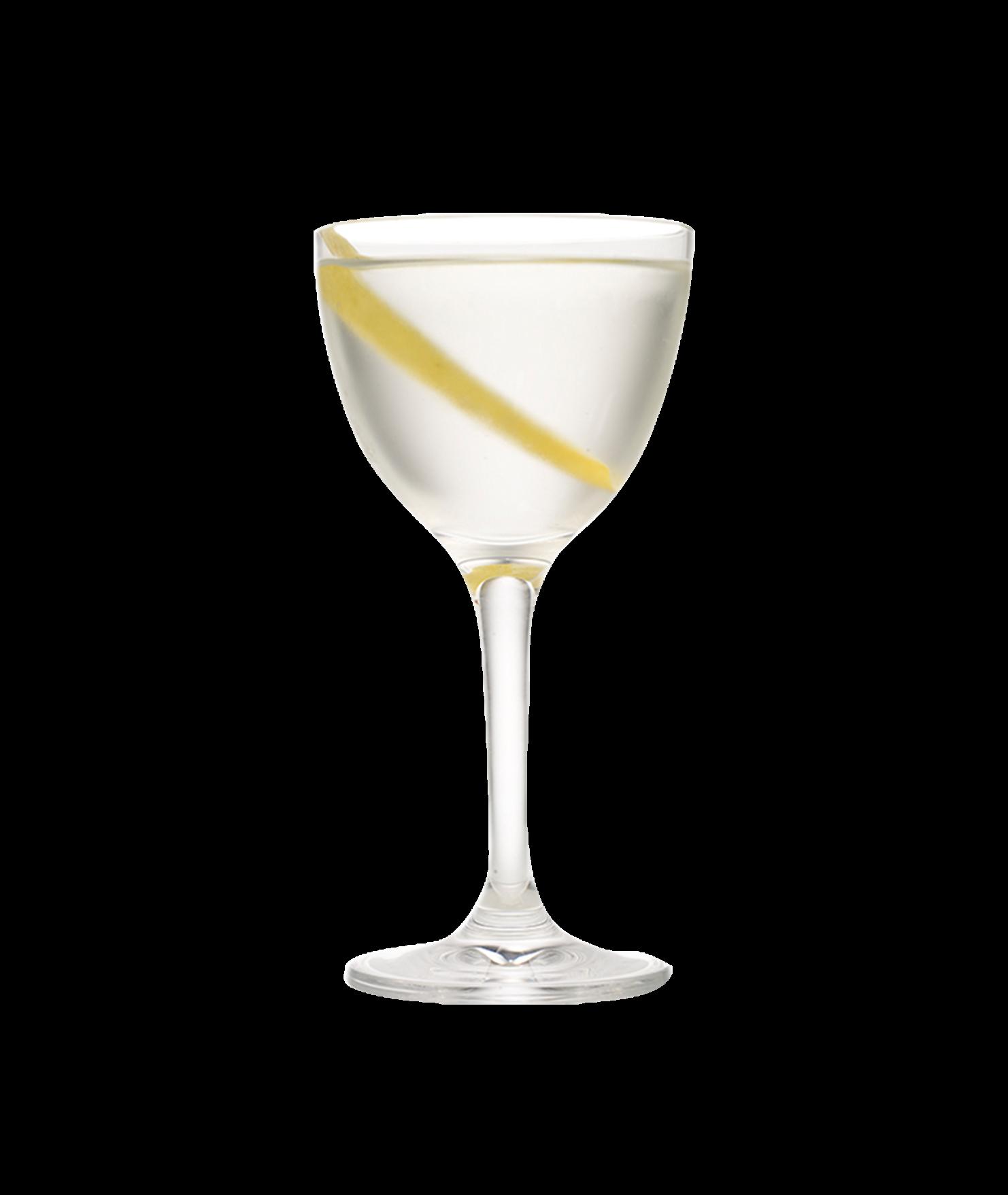 50/50 Martini Photo