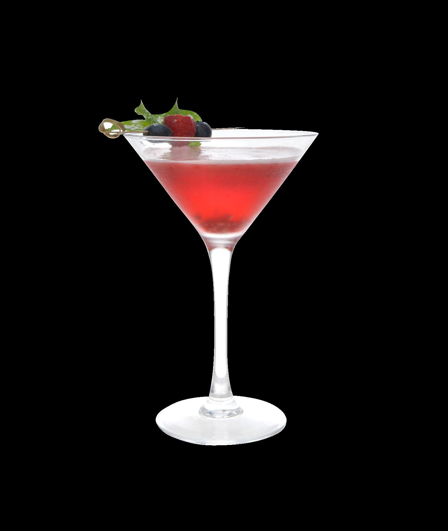 Pomegranate Hiro Martini Photo